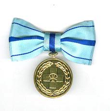 3 honors. Albert schweitzer gold medal front